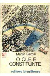O QUE E CONSTITUINTE - COLEÇAO PRIMEIROS PASSOS 143 (PRODUTO USADO - BOM)